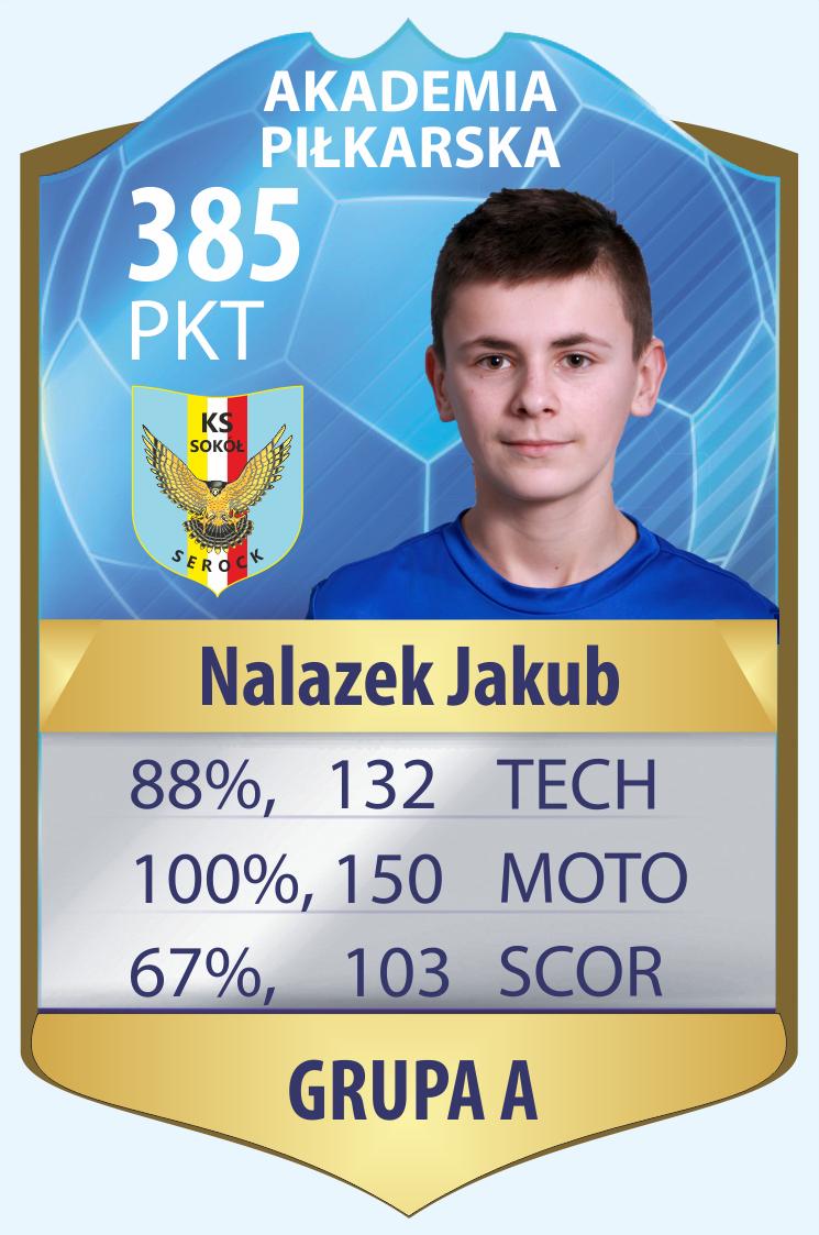 Nalazek-A.png